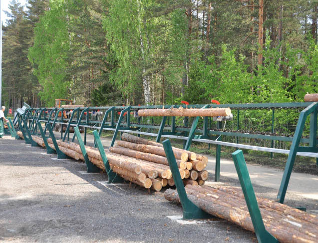 Timber volume grow at Riga
