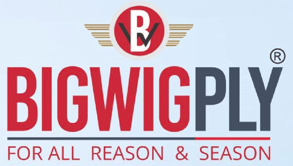 BigWig Ply logo